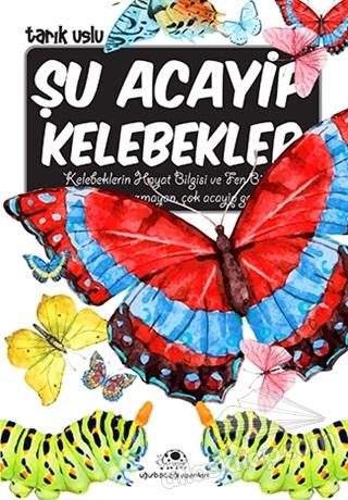 ŞU ACAYİP KELEBEKLER (  )