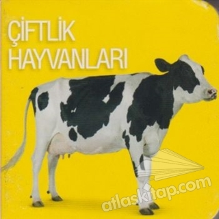 ÇİFTLİK HAYVANLARI (  )