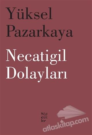 NECATİGİL DOLAYLARI (  )