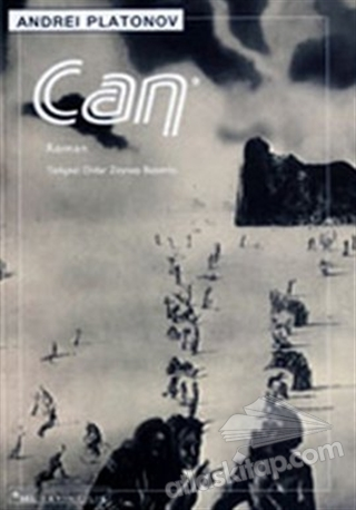 CAN (  )