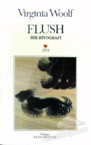 FLUSH BİR BİYOGRAFİ (  )