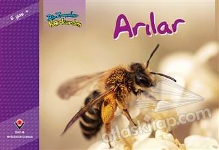 BİR ZAMANLAR KORKARDIM - ARILAR (  )