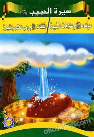 SİRETÜ'L-HABİB (5 KİTAP TAKIM) (  )