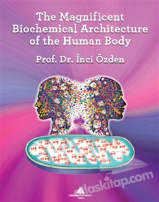 THE MAGNİFİCENT BİOCHEMİCAL ARCHİTECTURE OF THE HUMAN BODY (  )
