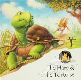 THE HARE & THE TORTOİSE (  )
