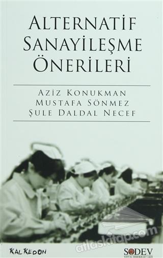 ALTERNATİF SANAYİLEŞME ÖNERİLERİ (  )